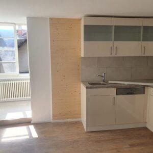 Küche Sanierung Olten 2