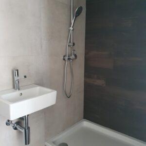 Renovated bathroom in zürich